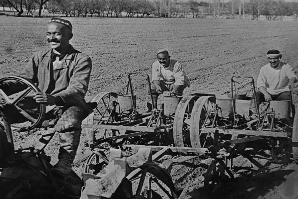 As fazendas coletivas foram criadas por Stalin no final da década de 1920.