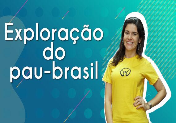 Thumbnail com a professora da videoaula sobre exploração do pau-brasil