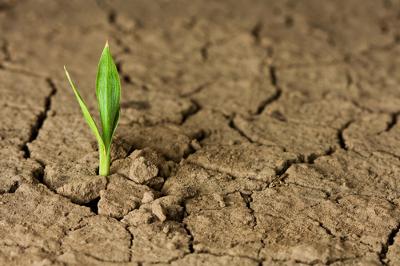 A terra seca do sertão nordestino foi uma das matérias-primas da obra poética de João Cabral