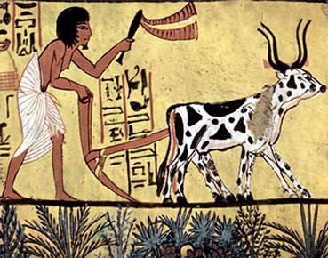 A base da economia egípcia era a agricultura