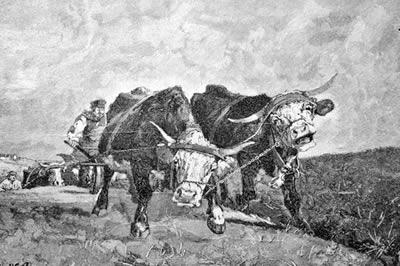 A intensificação das obrigações servis, ampliando a exploração dos camponeses, levou à eclosão das Revoltas Camponesas no séc. XIV